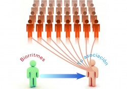 Biorritmes, la revista de la fibromialgia